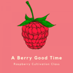 "Cartoon raspberry with the words ""A Berry Good Time"" Raspberry Cultivation Class"